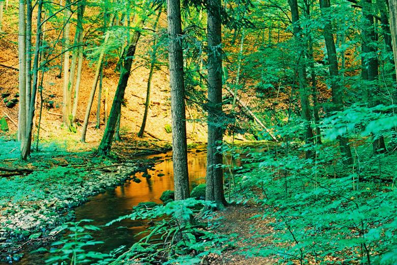 1.Moravian-Karst