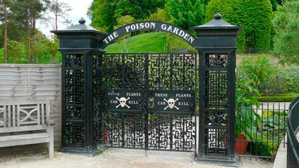 Alnwick_poison_garden