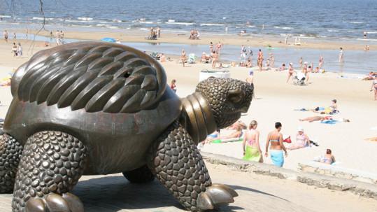 Turtle-in-Jurmala