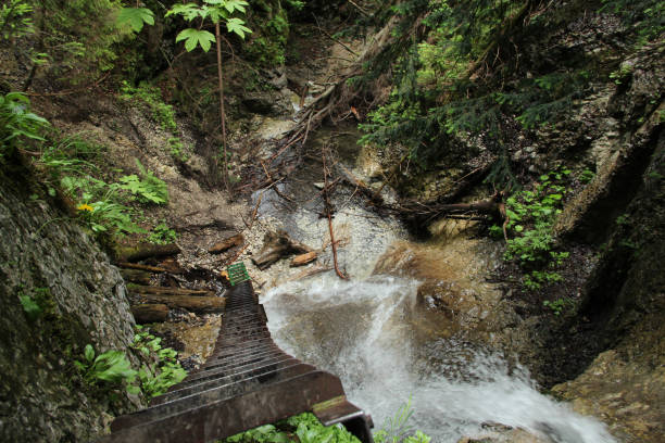 Dangerous trail through a waterfall with steel ladders in the Slovak Paradise National Park, Slovaki