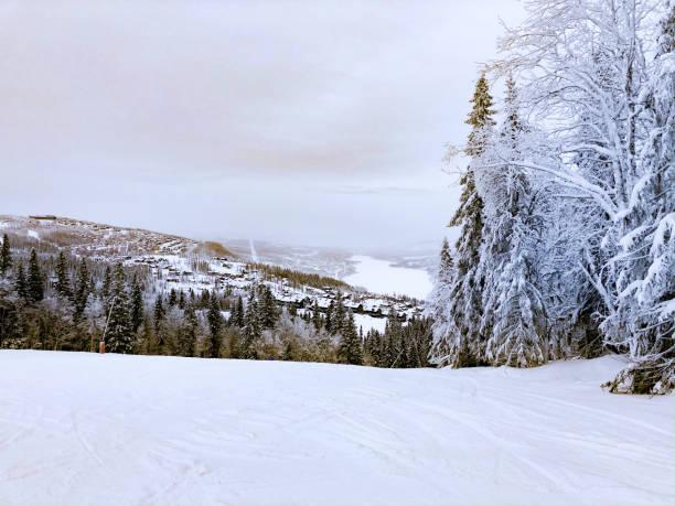 View from top of ski slope over ski resort Åre